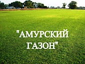"""Газонная трава, травосмесь """"Амурский газон"""""""