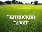 """Газонная трава, травосмесь """"Читинский газон"""""""