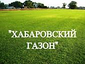 """Газонная трава, травосмесь """"Хабаровский газон"""""""