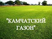 """Газонная трава, травосмесь """"Камчатский газон"""""""