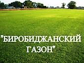"""Газонная трава, травосмесь """"Биробиджанский газон"""""""