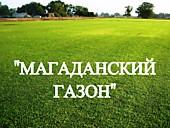 """Газонная трава, травосмесь """"Магаданский газон"""""""