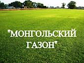 """Газонная трава, травосмесь """"Монгольский газон"""""""