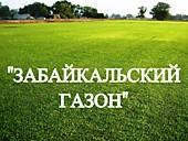 """Газонная трава, травосмесь """"Забайкальский газон"""""""